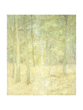 A Woodland Scene Giclee Print by Emil Carlsen