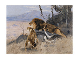 Lion and Lioness; Lowe Und Lowin Giclee Print by Wilhelm Kuhnert