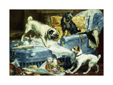 Playing Havoc, 1894 Giclee Print by Charles Van Den Eycken