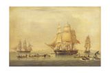Whalers of the South Seas Fishery Giclee Print by John Of Hull Ward