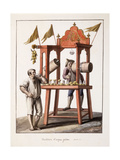Iced Water Vendor; Venditore D'Acqua Gelata, 1803 Giclee Print by Saviero Xavier Della Gatta
