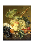 Fruit, Hazelnuts and Hollyhocks on a Marble Ledge Giclee Print by Jan van Huysum