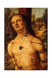Saint Sebastian Giclee Print by Fiorenzo Di Lorenzo