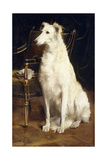 A Borzoi by a Chair Reproduction procédé giclée par St. George Hare