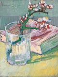 Still Life, a Flowering Almond Branch, 1888 Reproduction procédé giclée par Vincent van Gogh