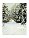 Snow-Laden Trees, 1887 Giclee Print by Walter Launt Palmer