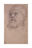 The Head of Pope Urban VIII Giclee Print by Pietro Da Cortona
