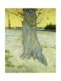The Old Tree; Le Vieil If, 1888 Giclee Print by Vincent van Gogh