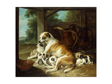 A Mother with Her Puppies, 1734 Giclee Print by Christophe Huet