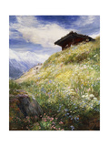 An Alpine Meadow, Switzerland Giclee Print by John MacWhirter