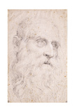 The Head of Saint Jerome, C.1611-1614 Giclée-tryk af Domenichino