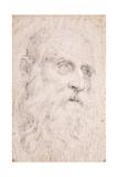 The Head of Saint Jerome, C.1611-1614 Giclée-tryk af Domenichino