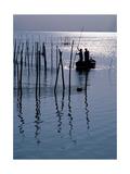 Spain. Valencia. Albufera Lake. Sunset Giclee Print