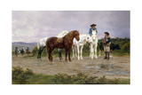 Pyrenees Farmers Market Bound, 1884 Giclee Print by Rosa Bonheur