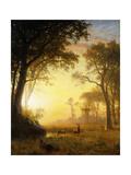 Light in the Forest Giclée-tryk af Albert Bierstadt