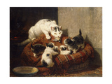 A Feathered Gift Giclee Print by Henriette Ronner-Knip