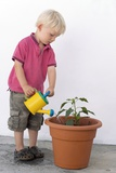 Boy Watering a Potted Plant Photographic Print by Carlos Dominguez