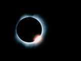 Total Solar Eclipse, 11 July 1991 Premium Photographic Print by Dr. Fred Espenak