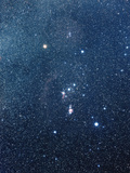 The Constellation of Orion Photographic Print by Luke Dodd