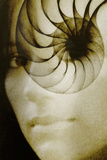 Nautilus And Woman's Face Photographic Print by Hannah Gal