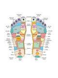 Reflexology Foot Map, Artwork Poster by Peter Gardiner