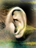 Hearing Photographic Print by Hannah Gal