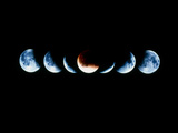 Total Eclipse of the Moon In November 1993 Photographic Print by Dr. Fred Espenak