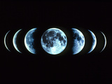 Composite Image of the Phases of the Moon Premium Photographic Print by Dr. Fred Espenak