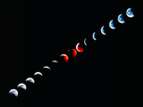 Total Eclipse of the Moon In December 1992 Photographic Print by Dr. Fred Espenak