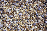 Beach Stones Photographic Print by Carlos Dominguez