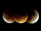 Lunar Eclipse Photographic Print by Dr. Fred Espenak