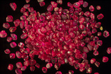 Rubies Panned From River Gravels Prints by Vaughan Fleming