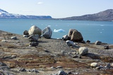 Glacial Erratics And Fjord Photographic Print by Dr. Juerg Alean