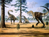 Tarbosaurus Photographic Print by Mauricio Anton
