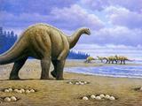 Titanosaur Photographic Print by Mauricio Anton
