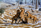 Scimitar Cats Attacking a Horse Photographic Print by Mauricio Anton