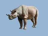 Brontops Prehistoric Rhino, Artwork Posters by Mauricio Anton