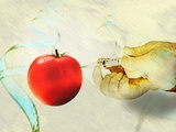 GM Tomato, Conceptual Artwork Photographic Print by Hannah Gal