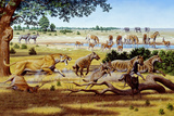 Hunting Sabre-toothed Cat Photographic Print by Mauricio Anton