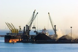 Bulk Shipping Cranes Photographic Print by Dr. Juerg Alean