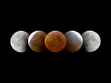 Total Lunar Eclipse, Montage Image Photographic Print by Dr. Juerg Alean