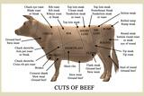 Take 27 LTD - Cuts of Beef Fotografická reprodukce
