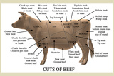 Cuts of Beef Prints by Take 27 LTD
