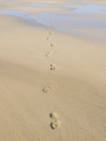 Footprints In Sand Print by Adrian Bicker