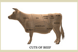 Cuts of Beef Photographic Print by Take 27 LTD
