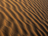 Ripples In a Sand Dune Photographic Print by Adam Gault
