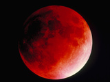 Lunar Eclipse Photographic Print by Dr. Juerg Alean