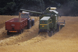 Combine Harvester Photographic Print by David Aubrey