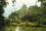 Jungle Settlement Photographic Print by Diccon Alexander
