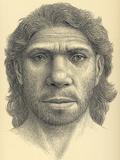 Homo Heidelbergensis Male Photographic Print by Mauricio Anton
